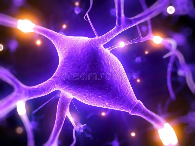 Активные нервные клетки иллюстрация вектора