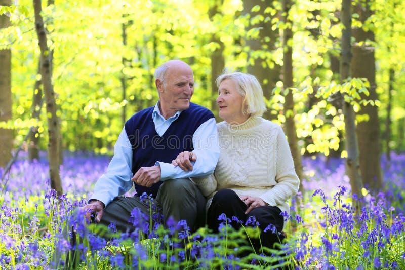 Активные старшие пары в лесе стоковые изображения rf