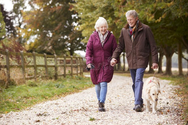 Активные старшие пары на прогулке осени с собакой на пути через сельскую местность стоковые фото