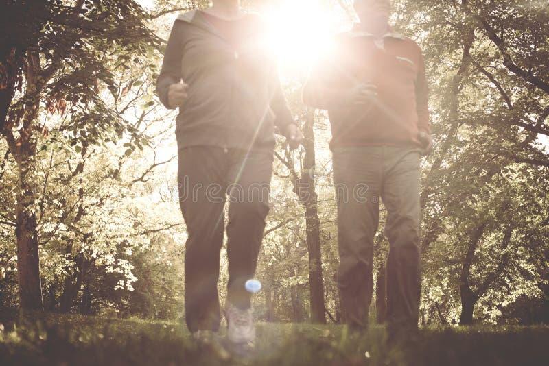 Активные старшие пары jogging совместно в парке стоковое фото