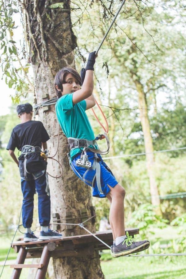 Активный храбрый мальчик наслаждаясь уходящий за границу взбираться на парке приключения дальше стоковая фотография rf
