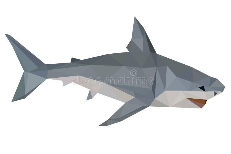 Акула, низко поли, геометрический, животная, вектор, изолированный, полигональный, дизайн, иллюстрация, море, хищник, тело, зоопа иллюстрация штока
