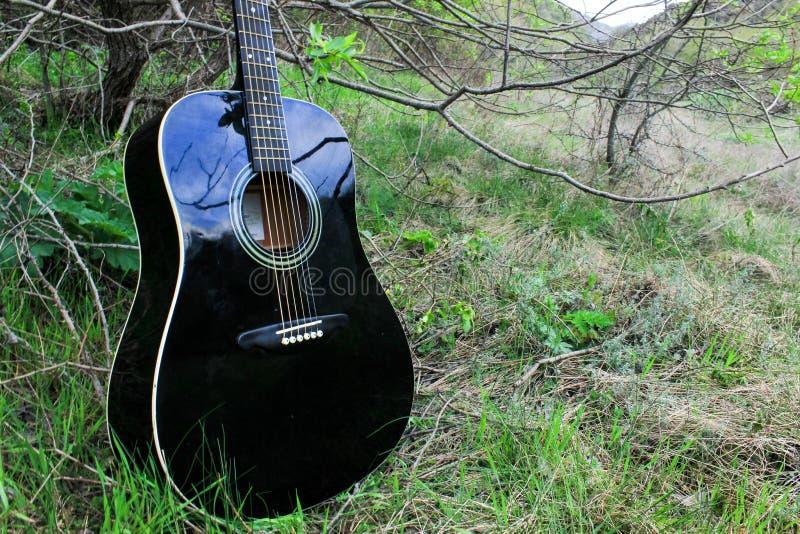 Акустическая черная гитара в древесинах стоковое фото rf