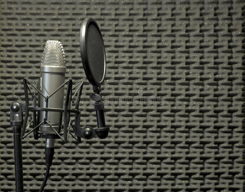 акустический микрофон будочки стоковые фотографии rf