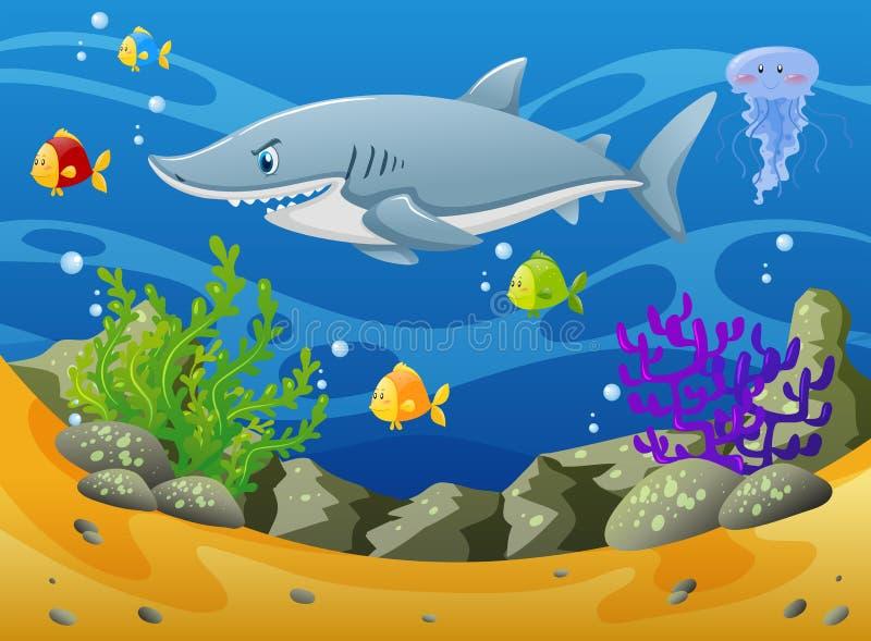 Акула и другие морские животные подводные бесплатная иллюстрация