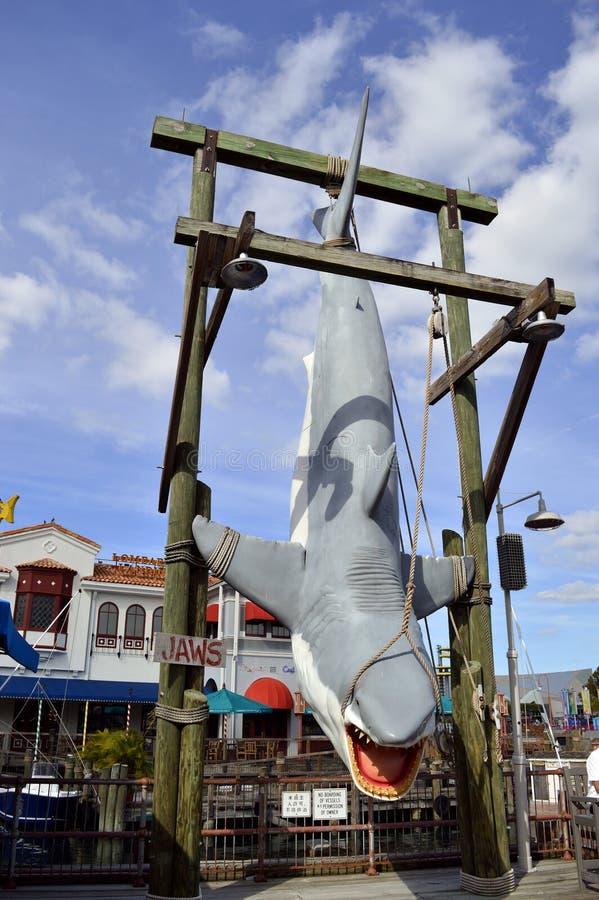 Акула челюстей которую приостанавливают на дисплее стоковые фото