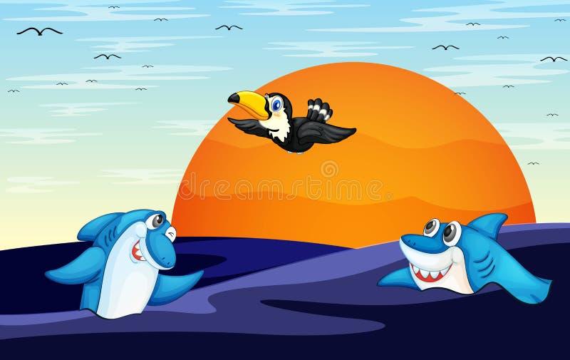 Акулы в океане и птица иллюстрация вектора