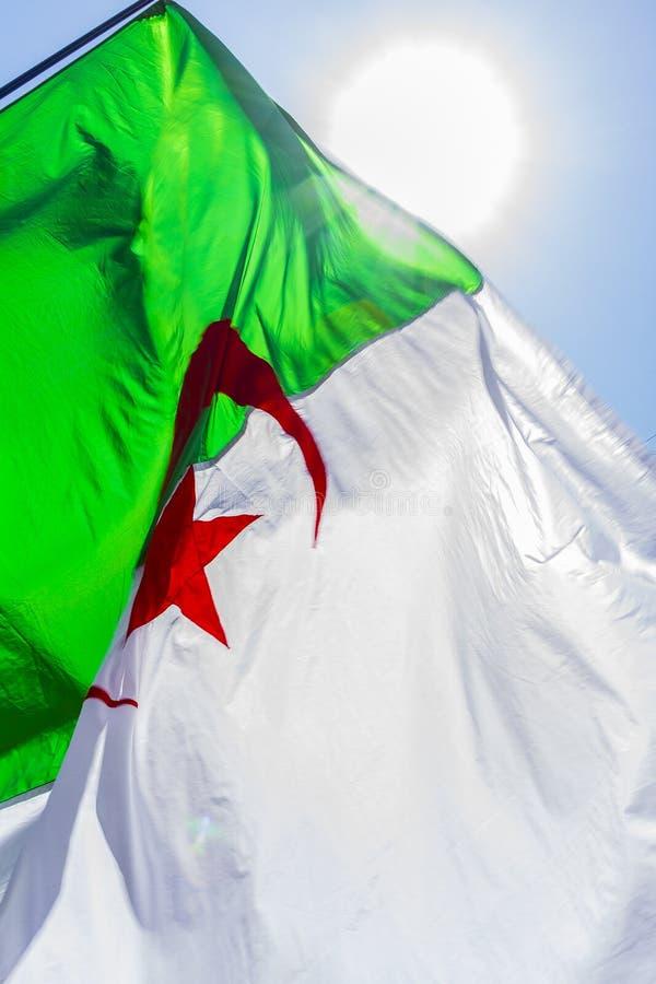 Алжирский флаг стоковые фото
