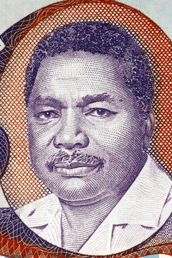 Али Хасан Mwinyi стоковые изображения