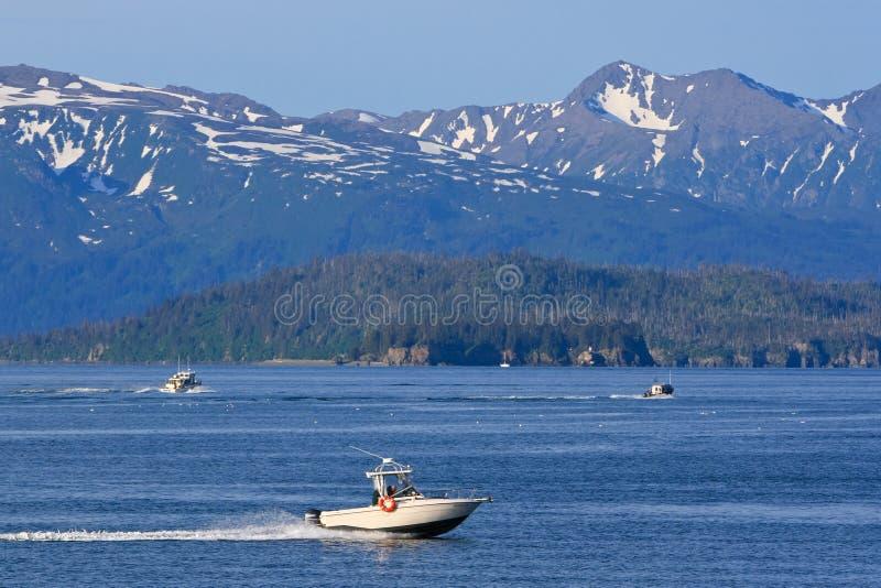 Аляска - рыбацкие лодки залива Kachemak пробежки домой стоковое фото rf