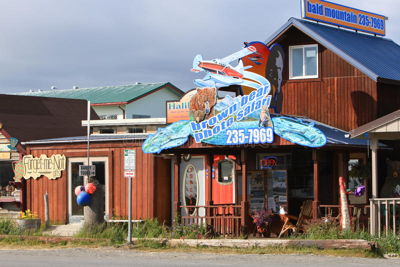 Аляска - сафари фото медведя пробежки домой стоковые фотографии rf