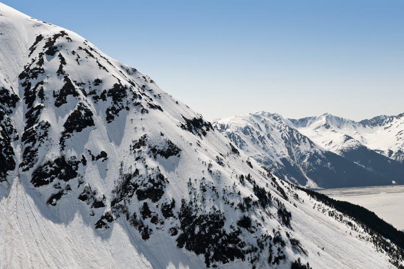 аляскские ледники стоковая фотография