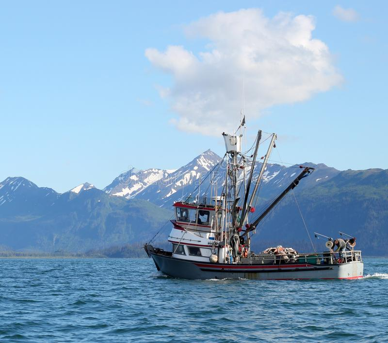 аляскское рыболовство шлюпки возглавляя вне море к стоковые изображения rf