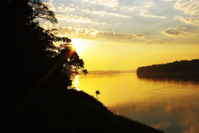 амазонский восход солнца стоковое фото