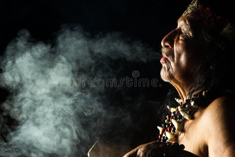 Амазонский портрет шамана стоковая фотография rf