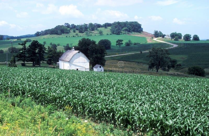 амбар Айова стоковое изображение rf