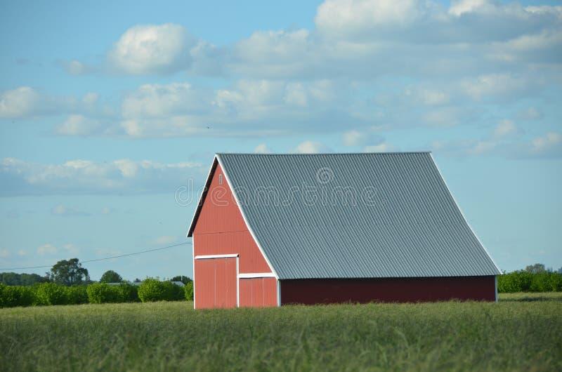Амбар в ферме долины Willamette около Albany, Орегона стоковое фото rf