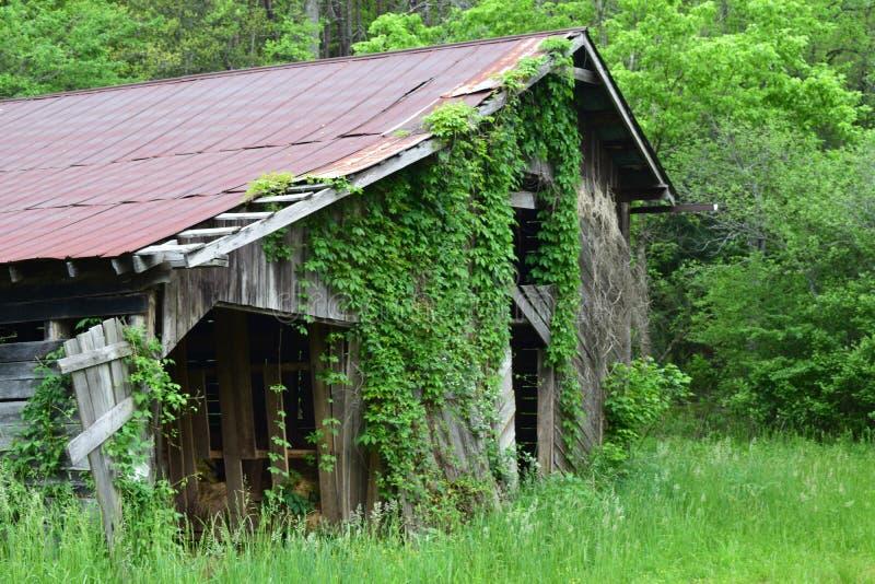 Амбар западной горы NC старый стоковые фотографии rf