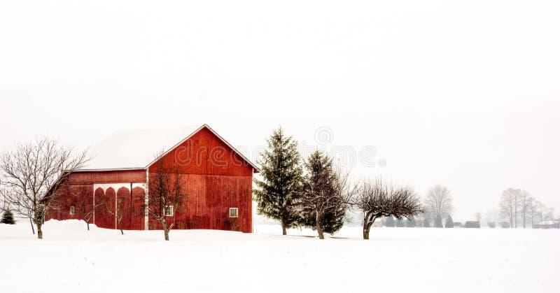 Амбар зимы Snowy стоковые фотографии rf