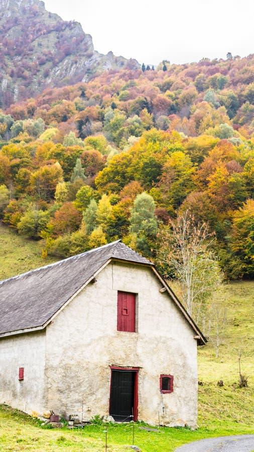 Амбар среди листьев осени стоковые фотографии rf