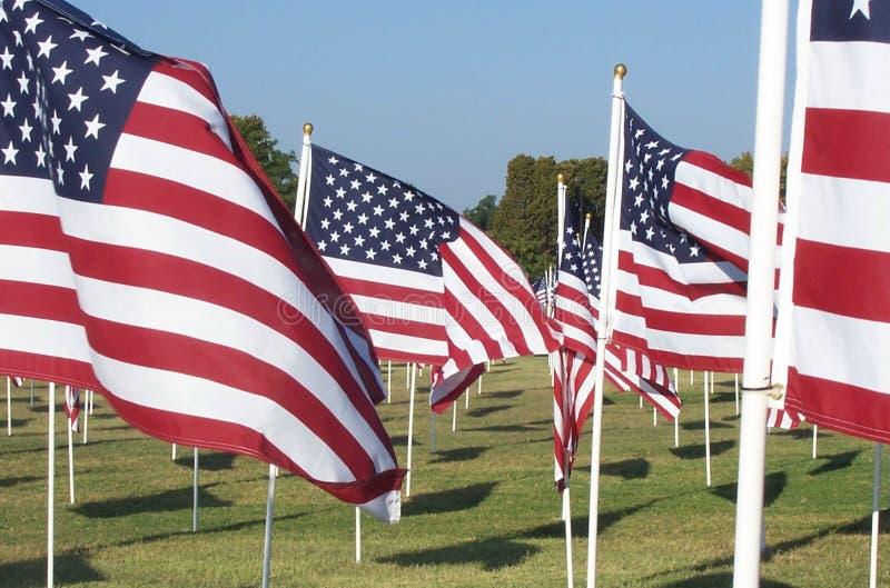 Download американские флаги стоковое изображение. изображение насчитывающей трава - 84587