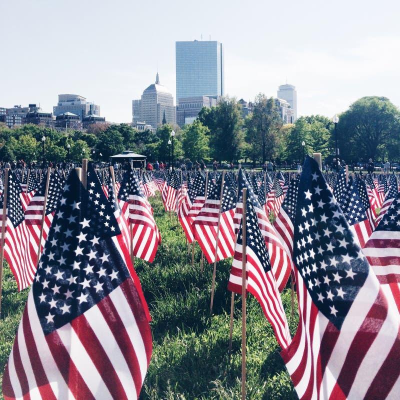 американские флаги стоковое фото