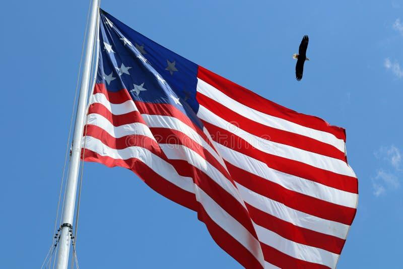 Американский флаг и белоголовый орлан стоковое фото