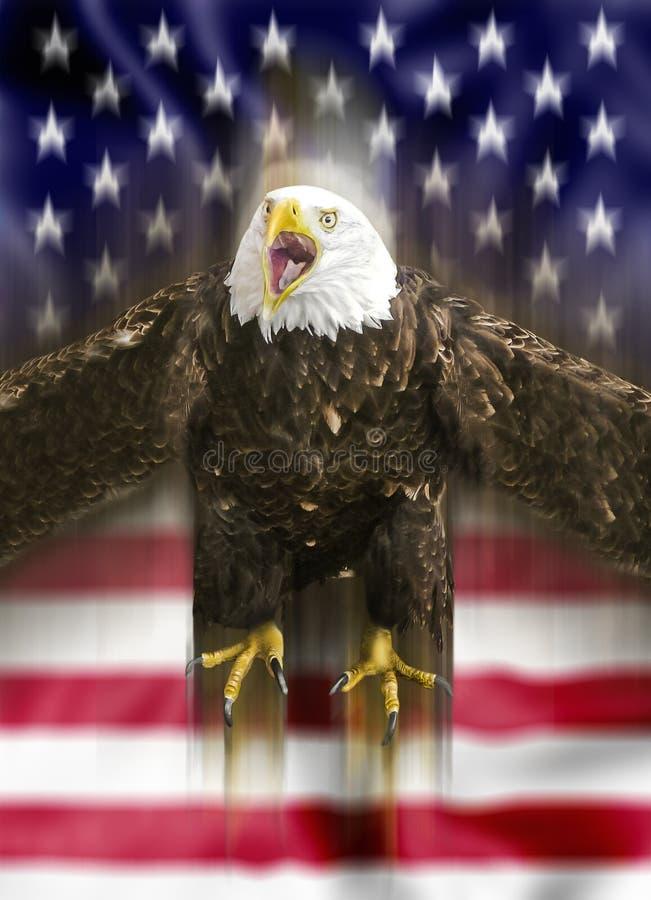 американский фронт летания флага облыселого орла стоковое изображение rf