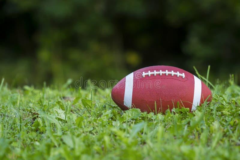 Американский футбол на поле с зеленой травой стоковые фотографии rf