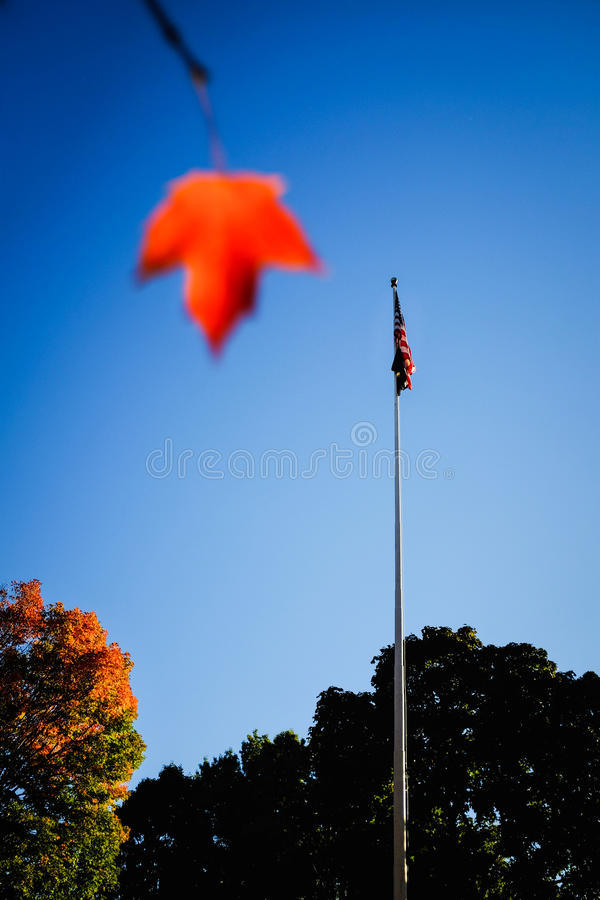 Американский флаг в осени стоковые фотографии rf