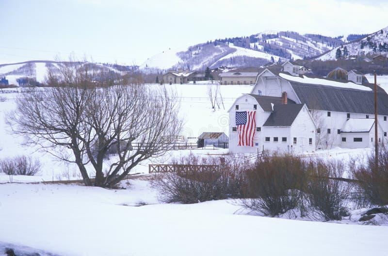 Американский флаг повиснул на амбаре в снеге, Park City, Юте стоковые фото