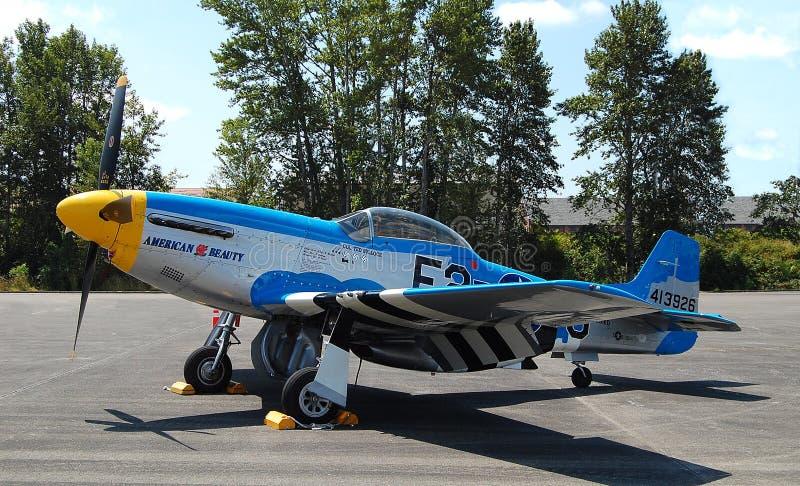 Американский Spitfire красоты стоковые изображения rf