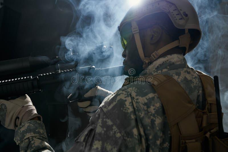 Американское шереножное с панцырем подготавливая для деятельности ночи стоковое изображение rf