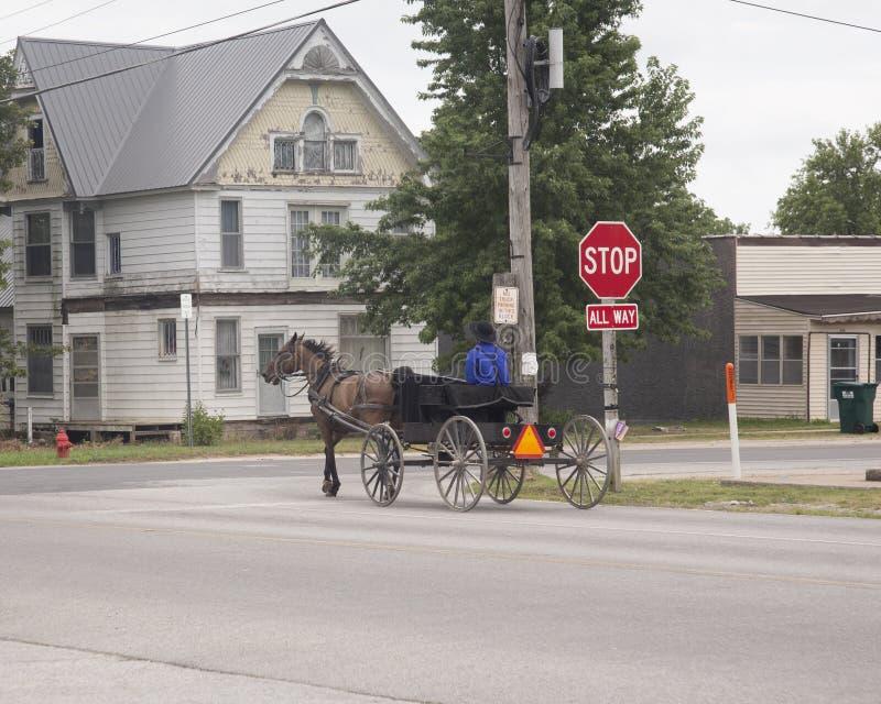 Амиши Nan, лошадь, и багги стоковые фотографии rf