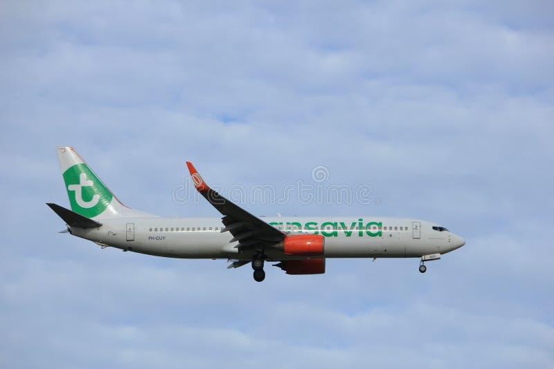 Амстердам, Нидерланды, 15-ое июля 2016: PH-GUY Transavia Боинг 737 стоковое изображение