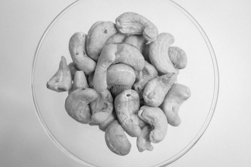 Анакардия в черно-белом стоковые изображения