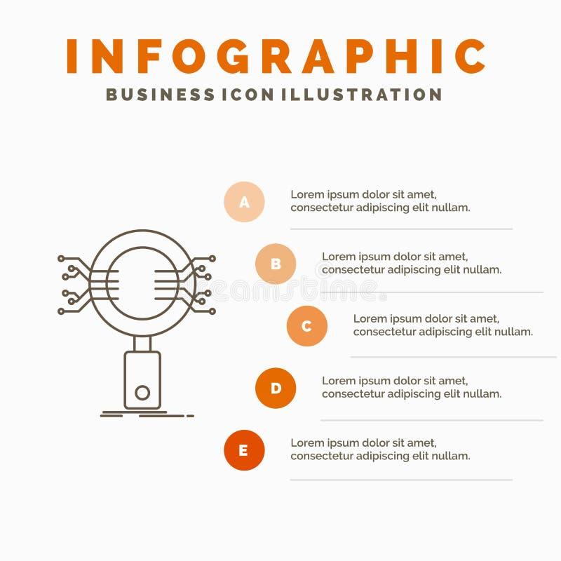 Анализ, поиск, информация, исследование, шаблон Infographics безопасностью для вебсайта и представление Линия серый значок с апел иллюстрация вектора