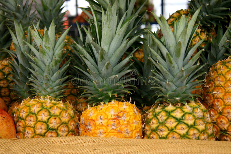 ананасы стоковые изображения