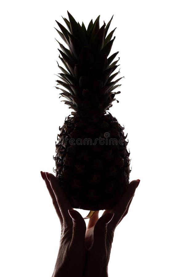 Ананас на руках ` s женщины на белой предпосылке стоковое изображение rf