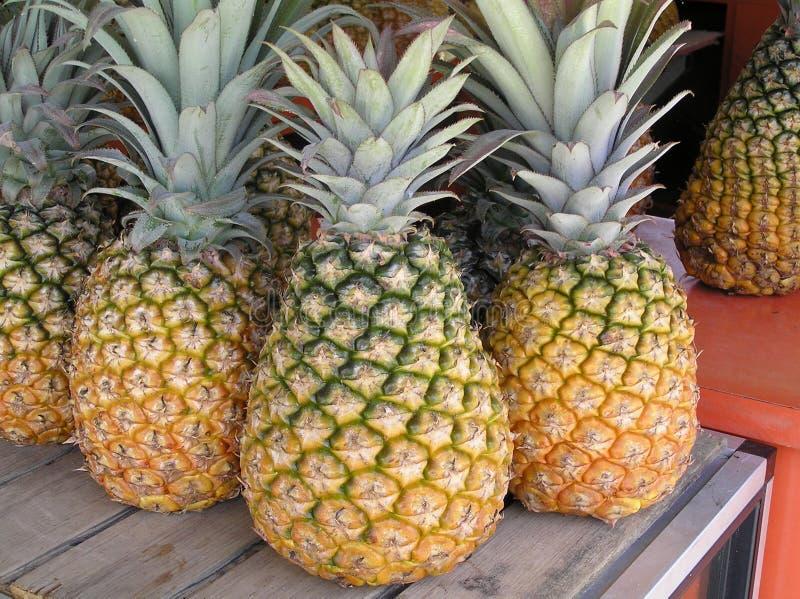 Ананас, свежие фрукты, Пуэрто-Рико стоковая фотография rf