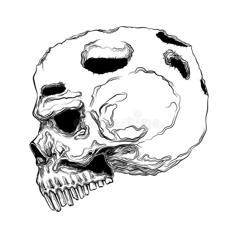 Анатомически правильный человеческий изолированный череп Линия нарисованная рукой иллюстрация вектора искусства проверите изображ иллюстрация штока