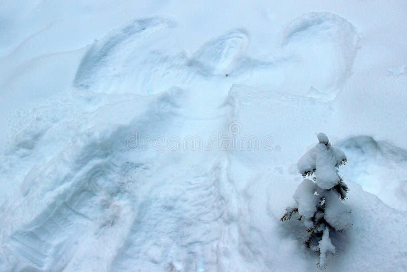 Ангел снега рядом с мех-деревом стоковая фотография rf