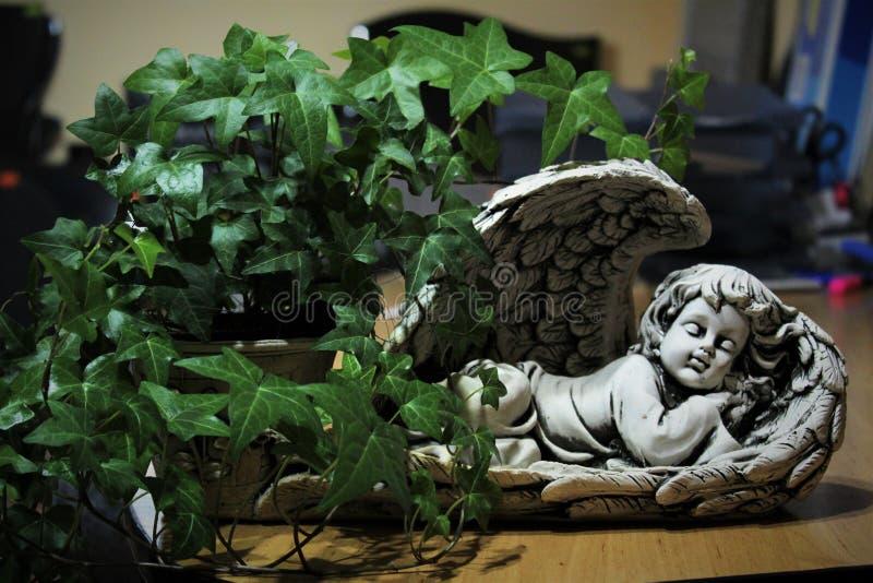 Ангел спать с цветочным горшком стоковое изображение