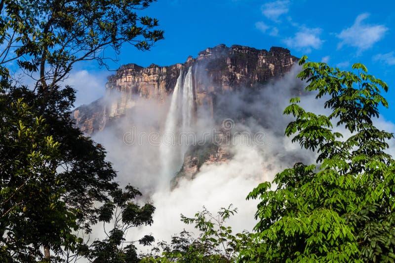 Ангел Angel Falls Salto стоковые изображения