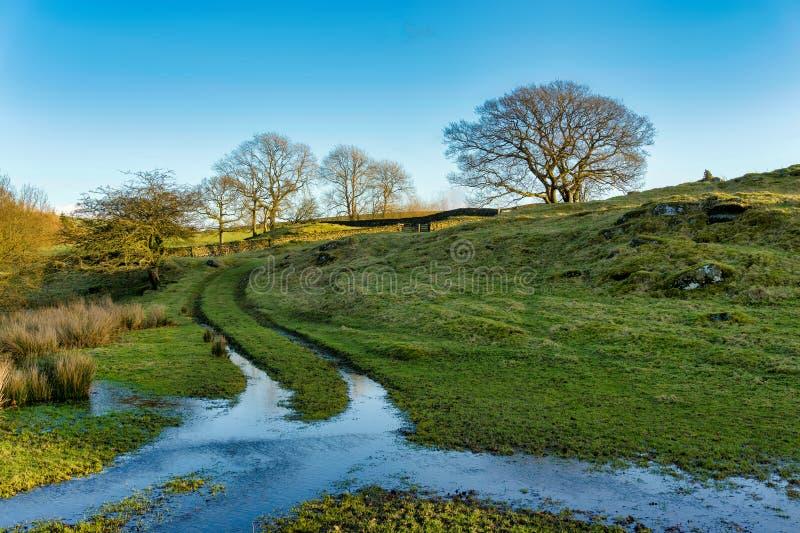 Английская сцена страны при частично затопленный след пропуская через поле стоковые фотографии rf