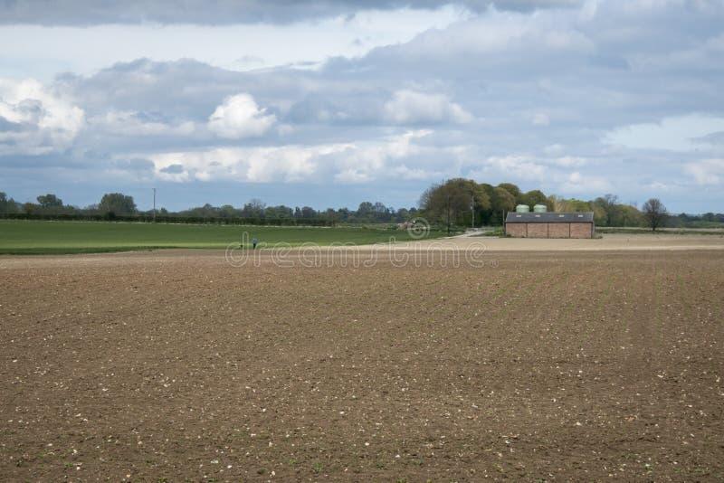 английский ландшафт сельскохозяйствення угодье стоковое фото rf