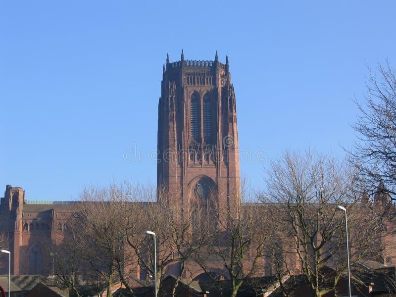 Download английский собор liverpool стоковое изображение. изображение насчитывающей окна - 483573