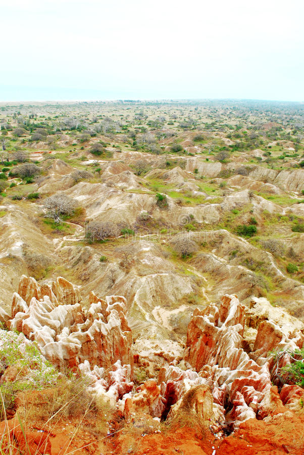 Ангола стоковые изображения
