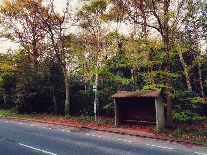 Английская автобусная остановка сельской местности стоковое изображение