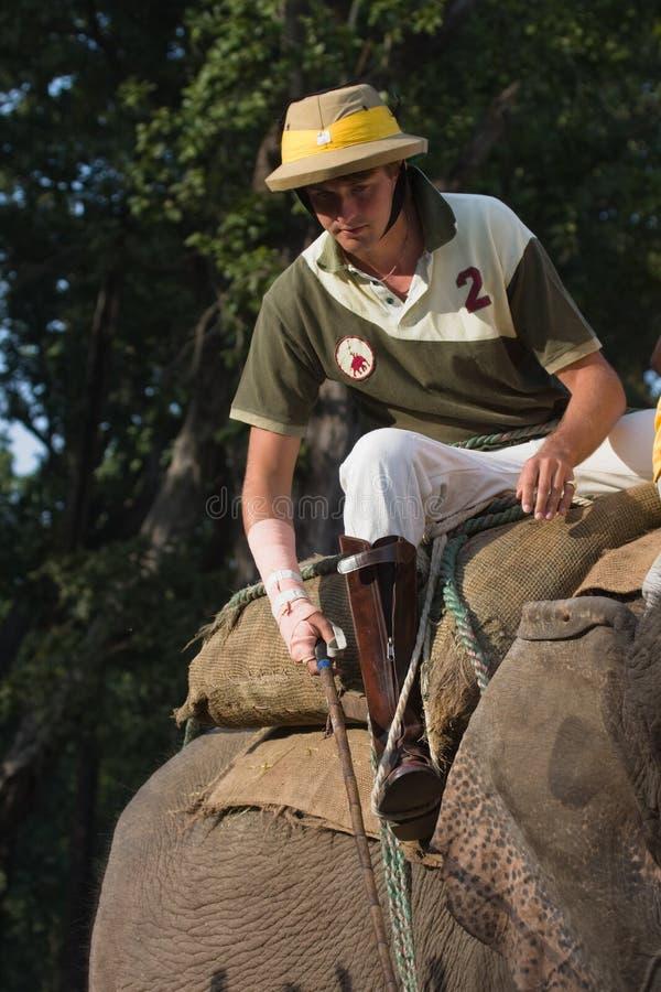 Английский игрок поло, во время игры поло слона, Thakurdwara, Bardia, Непал стоковая фотография rf
